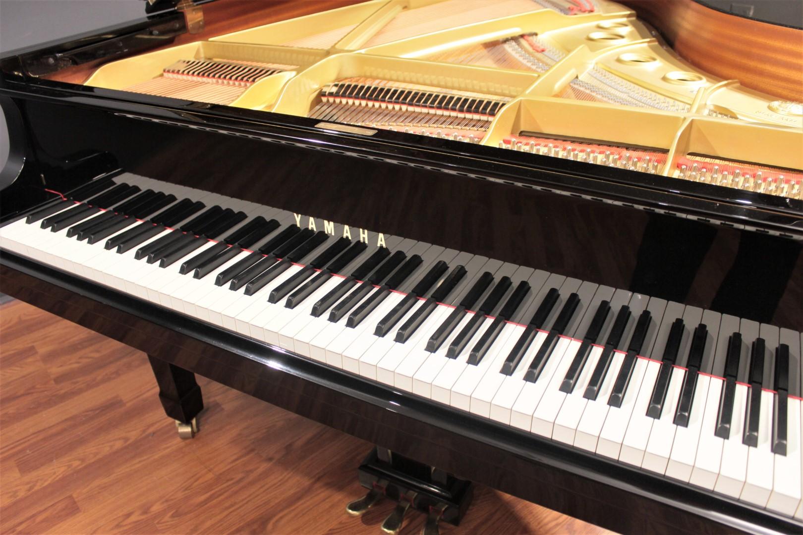 Yamaha c3 6 39 1 39 39 grand piano 1987 grand pianos for Yamaha c3 piano